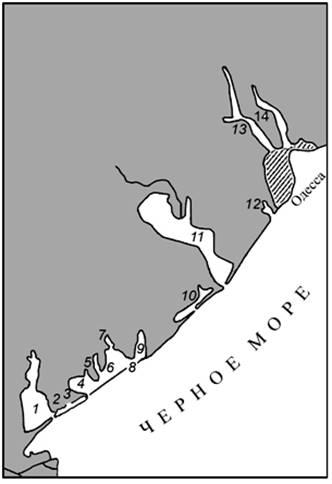 побережье Черного моря,
